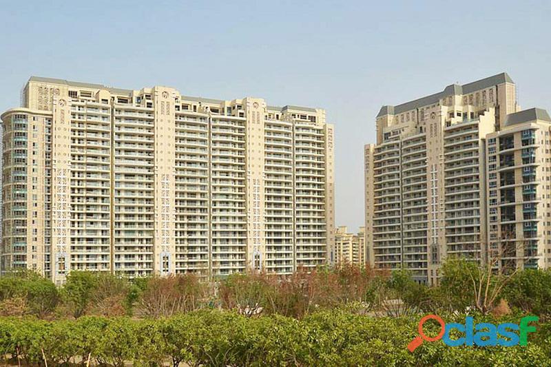 4 bhk service apartment for rent in dlf the magnolias gurugram