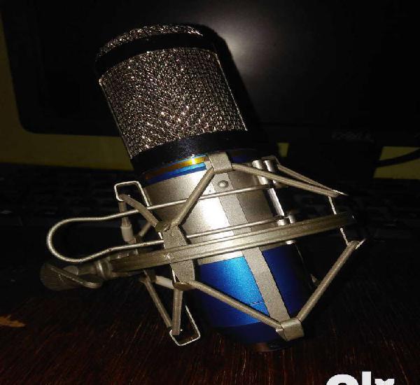 Bm-800 studio microphone
