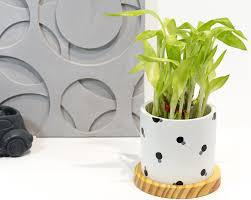 Buy home decorative items online