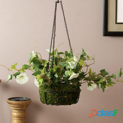 Heavy discounts!!! shop home decor items online in noida starting at just rs 359