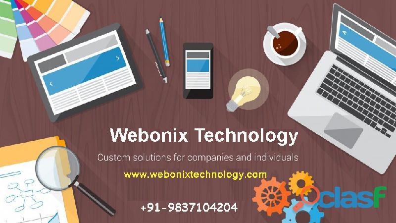 Website designing company in meerut   webonix technology