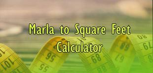 1 marla to square feet know details about the conversion
