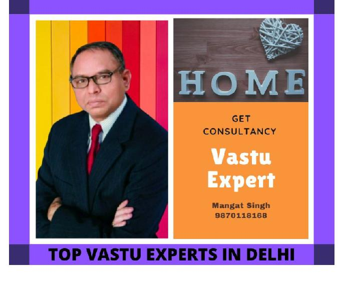 Top vastu experts in delhi
