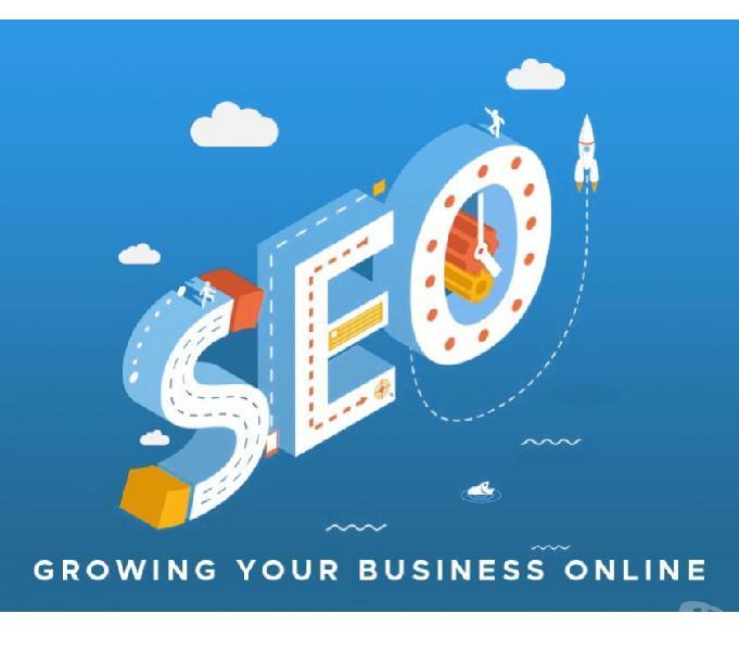 Seo company in delhi | seo company india | seo services