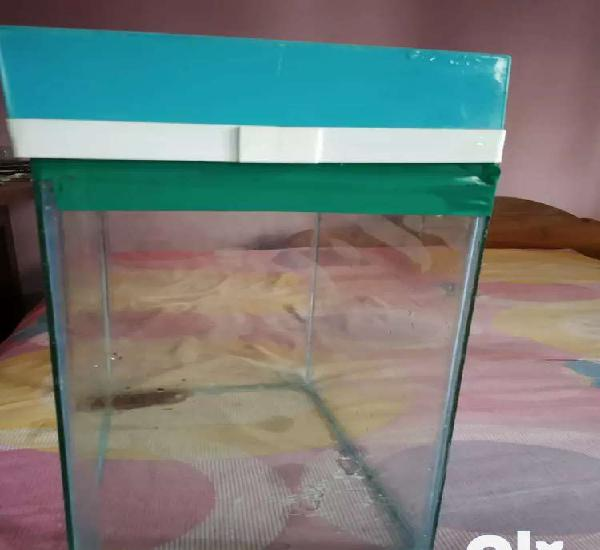 Aquarium for sale.