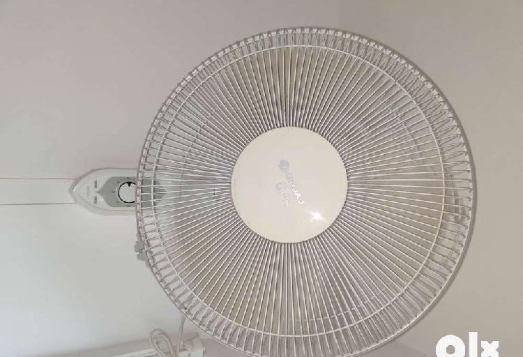 Wall fan and celing fan for sale