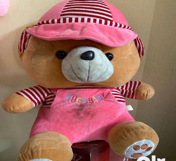Cute teddy with cap