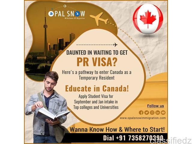 Best immigration consultant in chennai | opalsnow
