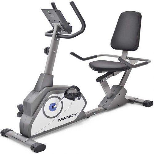 Best exercise bike under 300 dollars