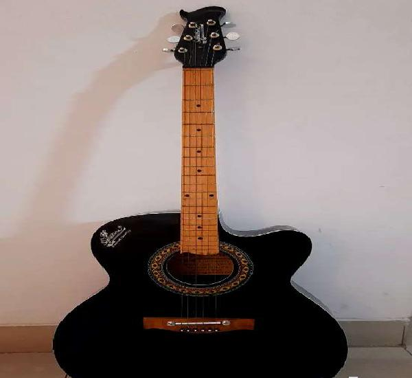 Guitar ( brand new condition)